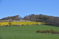 Mountain spitzberg in saxon