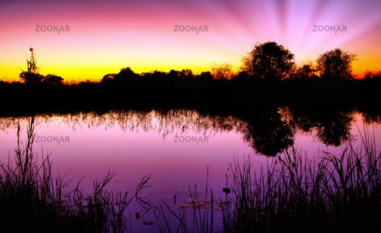 Sunrise in Bwabwata National Park, Namibia