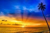 beautiful sunset of the caribbean