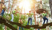 Gruppe beim gemeinsam Klettern im Kletterwald
