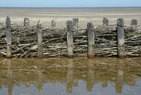 Coast Protection in North Frisia at North Sea called Lahnung,schleswig-Holstein,Germany