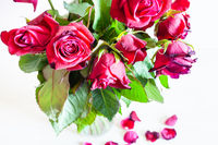 above view of bouquet of wilted red roses in vase