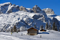 Skiing on Sella Ronda beneath the Sella mountain range, Corvara, Alta Badia, Dolomites, Italy