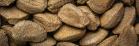 Brazilian nuts in shells closeup background