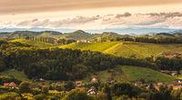 Styrian Tuscany Vineyard in autumn near Eckberg, Gamliz, Styria, Austria