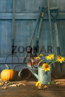 Pumpkin and flowers with tools