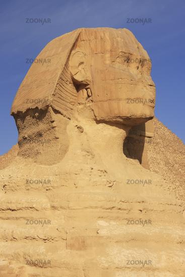The Sphinx against blue sky, Cairo, Egypt