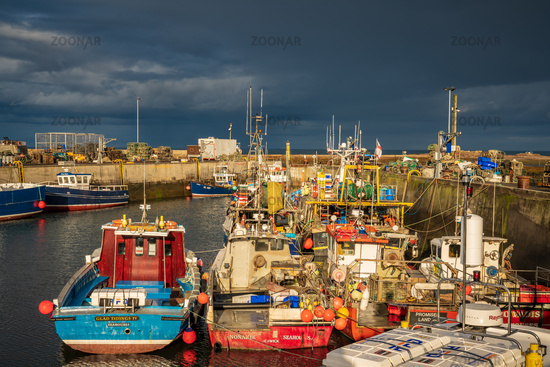 Seahouses, Northumberland, England, UK
