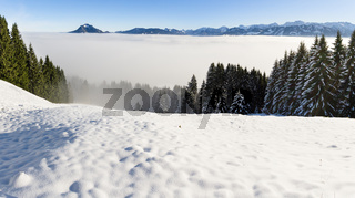 Amazing winter panoramic view to snowy Mountain Range above inversion fog clouds with forest trees. Sunny view from Oftersschwanger Horn to Gruenten and Allgauer Alps.
