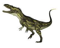 Torvosaurus dinosaur roaring - 3D render
