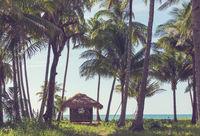 Hut in Palawan