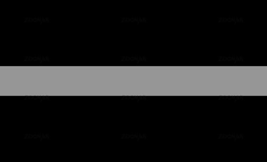 thin silver line flag