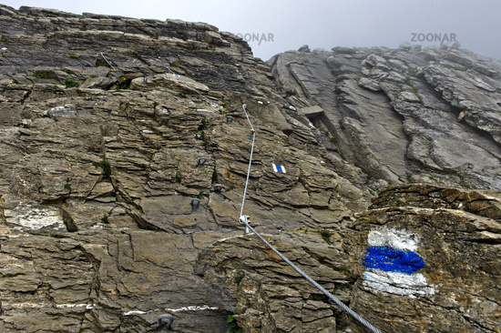blue and white marked alpine hiking trail, Grindelwald, Bernese Oberland, Switzerland