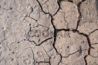 ausgetrockneter Boden im Sommer