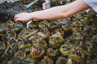 Hairy crabs for sale on fish market, Hongkong -