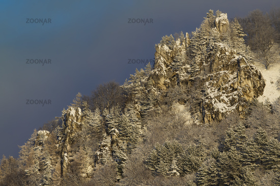 Rocky hill side with pine trees growing on it covered with snow in winter