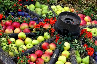 Obst Marktstand