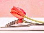 Closeup of utensils and red tulip