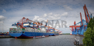 Panorama of a harbour basin with large container bridges and container ships