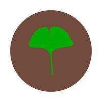 Ginkgo Blatt und Kreis - Ginkgo leaf and circle