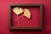 Minimal Composition With Wooden Frame