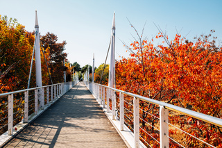 Seoul forest park, Bridge road with autumn colorful trees in Korea