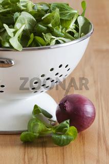 Rapunzelsalat in einem weißen Emaille Seiher