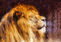 lion portrait on abstract background.