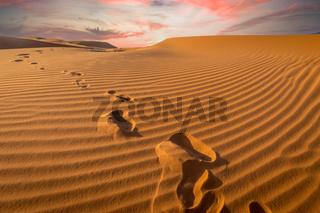 Sunset over footprints in the sand, Sahara - Erg Chebbi, Morocco