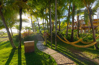 Panama hammocks in the garden of a resort in the tropics