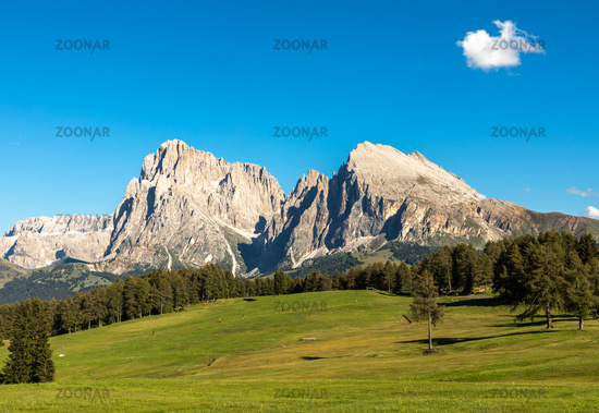Seiser Alm, Alpe di Siusi, with a view to Langkofel and Plattkofel mountain, South Tyrol