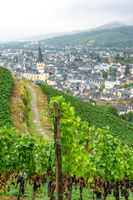 View on Ahrweiler with a vineyard