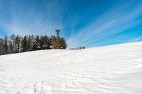 Snowshoe tour at the Gehrenberg near Lake Constance