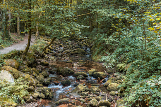 On the way to the Geroldsauer Waterfall, Baden-Wuerttemberg, Germany