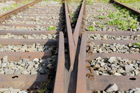 Symbolic photo, symbolic picture, choose path decision,