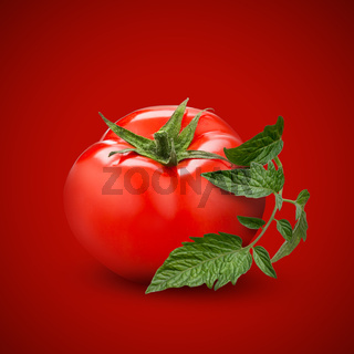 tomato with green leaf on red