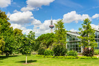 Palmengarten and Europaturm in Frankfurt am Main