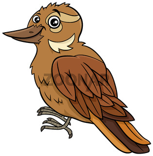cartoon xenops bird comic animal character
