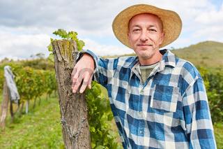 Weinbauer lehnt an einem Rebstock