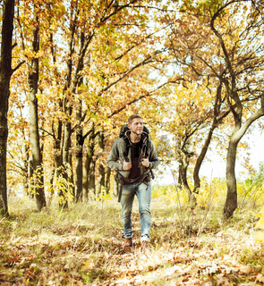 Traveler backpacker walking in autumn forest, young caucasian man in gray jacket goes along the trail admiring beauty of nature on sunny day. Hiking concept