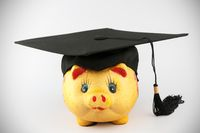 Graduation cap and piggy bank
