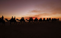 Western Australia - Camel ride at the sunset with silhouette of tourists on Cable Beach in Broome