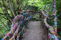 Colorful satin ribbons tied by tourists for good luck on the wooden railings of a small bridge in the mountains among the trees.