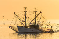 Fishing trawler with fishing nets at sunset, Buesum, North Sea, Schleswig-Holstein, Germany
