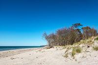 Landschaft am Weststrand an der Ostseeküste auf dem Fischland-Darß