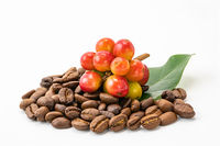 Bunch of coffee fruit with leaf and a pile of coffee beans on white background with clipping path.