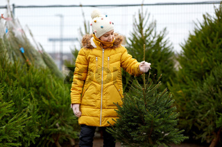 little girl choosing christmas tree at market