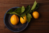 Flat lay still life of a group of fresh picked lemons attached to leaves and stem on a round blue plate.
