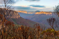 Blue Mountains escarpment and valley after a bush fire