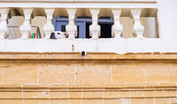 A dog gazes lazily on the veranda of a traditional house in the old city of Nicosia, Cyprus